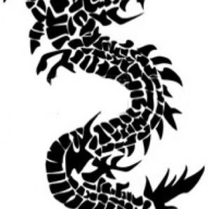 Nice Dragon Design