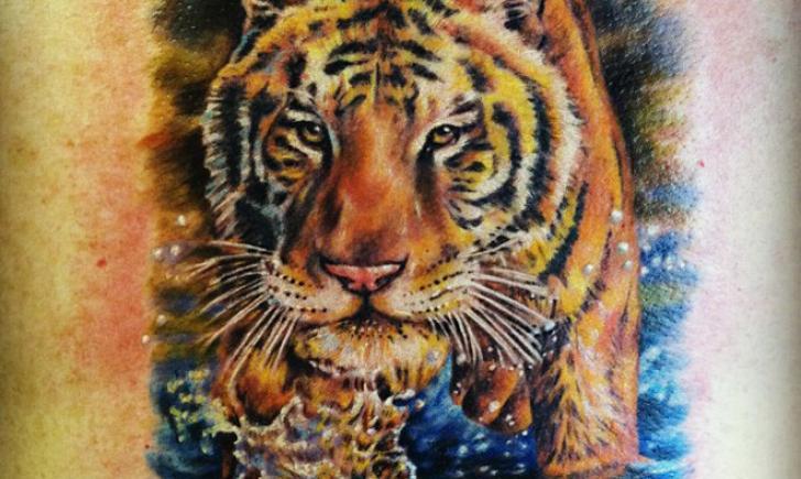 NY Nic Tiger