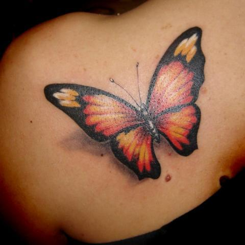 Butterfly Tattoos – Tattooing The Journey of Your Transformation